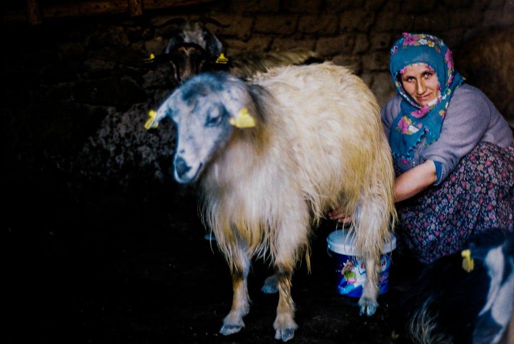 Kurdish woman (yedi kilise)